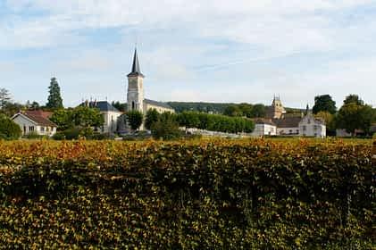 Vue d'Aloxe-Corton